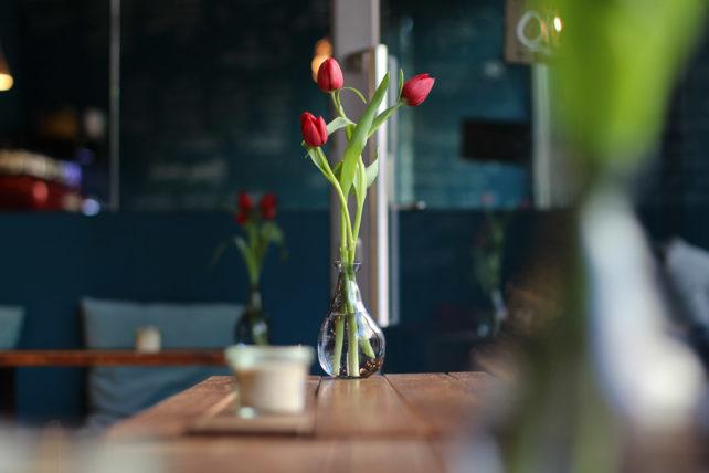 Veganer Food Blog trifft auf Kaffeeliebe